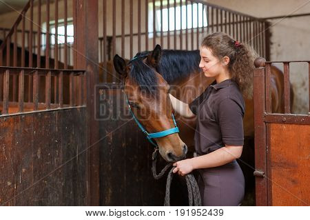 Young rider with a horse in a stable