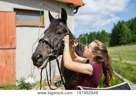 Young girl saddles a horse outdoors in summer