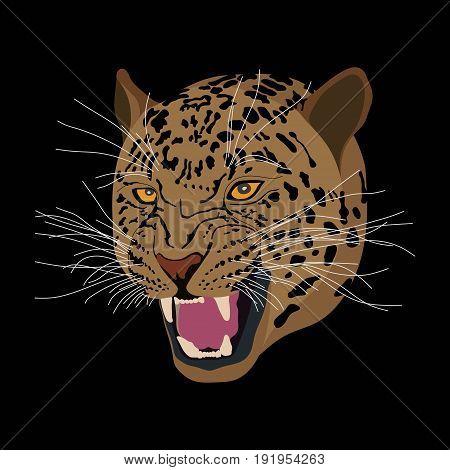 Tiger head flat design wild predatory animal