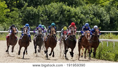 PYATIGORSK,RUSSIA-JUNE 09,2013:Start race for the prize of the Bolshoi Sprinterskion one of the largest racecourses Russia,in Pyatigorsk.