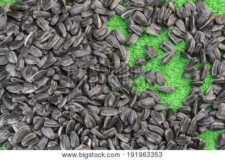 Black sunflower seeds lie on an emerald green background