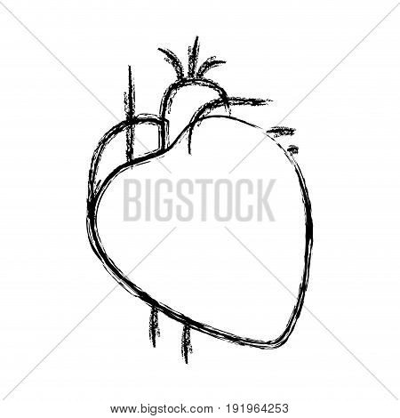 blurred hand drawing contour heart system human body vector illustration