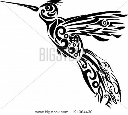 Humming-bird vector, illustration of the flying bird, pattern on an animal from lines