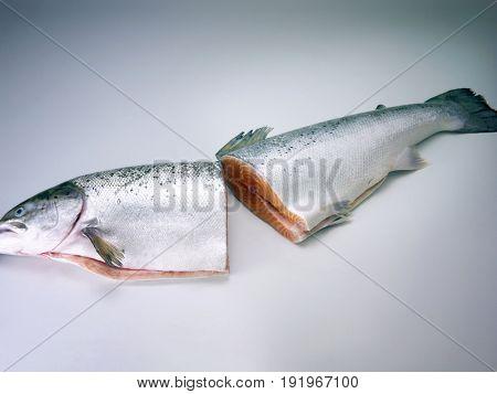 salmon in halves