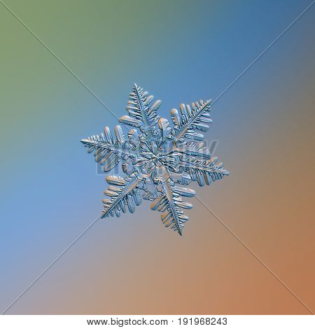 Real snowflake macro photo: small stellar dendrite snow crystal with unusually dense array of long side branches at each arm. Snowflake glittering on smooth blue - orange gradient background.