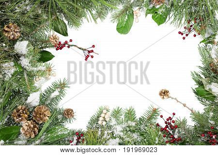 Christmas pine cones green white background object