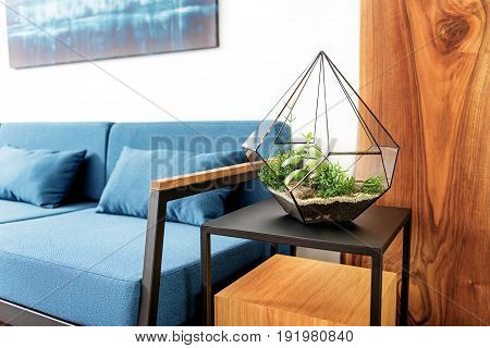 Close up of designer vase with composition of plants on top of cubic stand nearby sofa. Picture hanging above couch. Focus on flowerpot