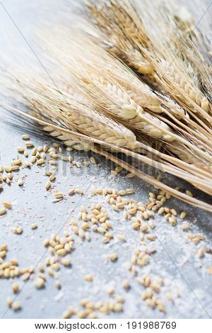 Organic Ingredients For Bread Or Pasta Preparation - Flour, Wheat Ears