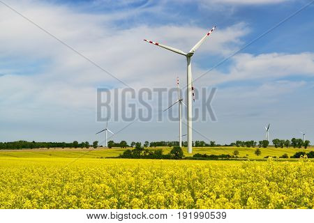 Wind power plant turbines in the blooming rapeseed field against blue sky