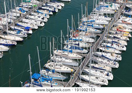 Rows of various yachts moored in marina