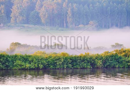 Summer landscape of picturesque forest nature and river under soft early morning summer sunlight. Colorful foggy summer nature in early summer morning. Summer background with summer forest and foggy river-summer nature view