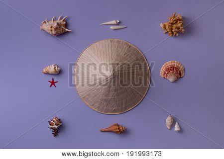 Conic Hat And Seashells
