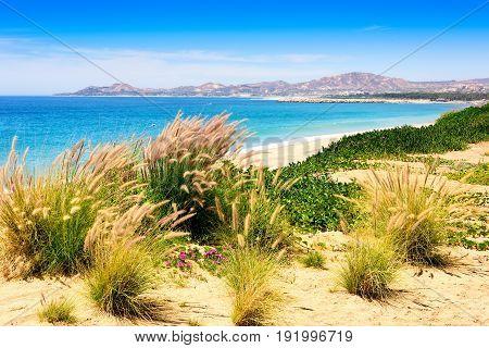Sea of Cortez and beach in Los Cabos Mexico