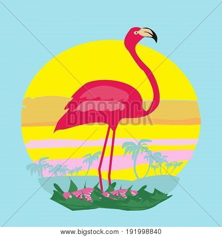 sunset and pink flamingo , vector illustration