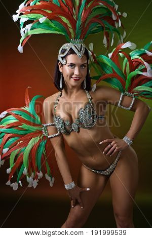 Beautiful Girl In Carnival Costume.