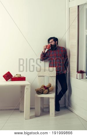 hipster or man with long beard in stylish plaid shirt drinking from cup at wooden chair with cute teddy bear with red heart and boxes on white wall. Valentines day holiday celebration