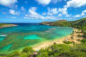 Aerial view of famous Hanauma Bay Nature Preserve with beach and coral reef in Oahu island, Hawaii, United States. Summer time leisure and water sports recreation. Nature scenic landscape. poster