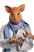 Swine Flu metaphor showing a doctor with pig's head getting hand sanitizer poster