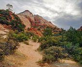 Gloomy slopes of Zion canyon. Utah. USA. poster