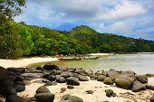 White sand tropical beach. Phi Phi island. Thailand poster