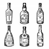 Different alcoholic drinks in bottles. Vector illustration in hand drawn style. Sketch of bottles absinthe, rum and cognac poster
