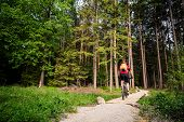 Mountain biker riding on bike in spring inspirational forest landscape. Man cycling MTB on enduro inspiring trail track. Sport fitness motivation and inspiration. poster