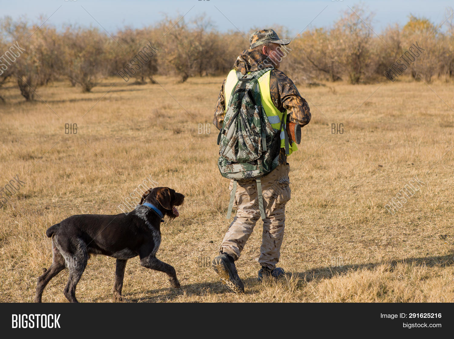 Field Trial Vest For Dogs