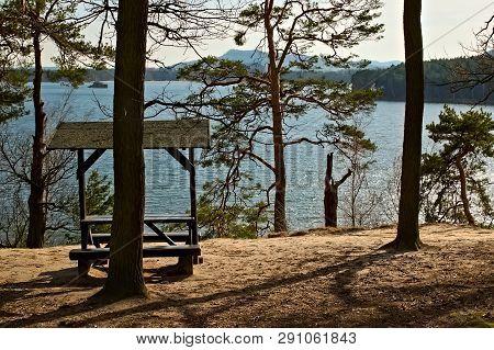 Trees By Machovo Jezero Lake In Czech Tourist Region Of Machuv Kraj