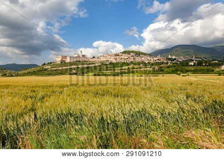 An image of a view to Assisi in Italy Umbria