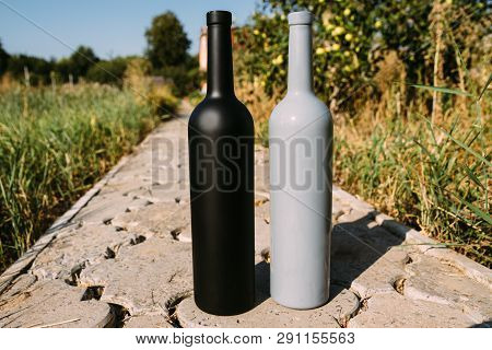 two black and gray bottles on the road from the tiles, the village, rural alcoholism, drunkenness. alcoholic illness. wine road in the countryside poster