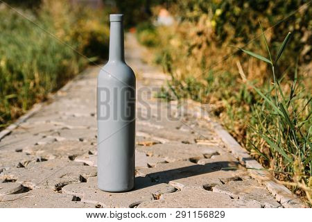 one gray bottle on the road from the tiles, the village, rural alcoholism, drunkenness. alcoholic illness. wine road in the countryside poster