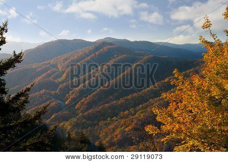 Newfound Gap