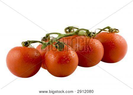 Six Fresh Tomatos Isolated On White Background
