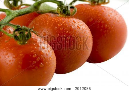 Red Tomatos Isolated On White, Selective Focus