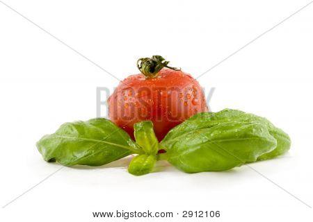 Tomato With Basil Isolated On White Background