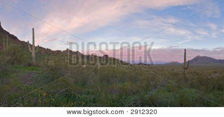Picacho pico