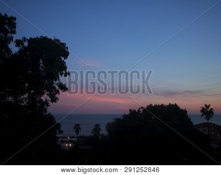 Sea And Trees Under Sunset Light, Horizontal View
