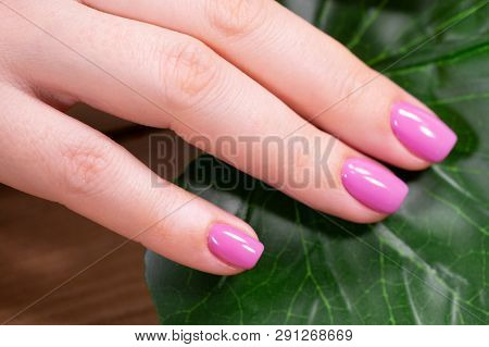 Hands With Beautiful Nails Painted Bright, Manicure