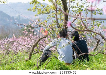 Chengdu, Sichuan Province, China - March 20, 2019: Two Chinese Boys Sitting Under A Tree And Enjoyin