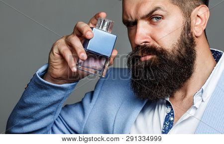 Fashion Cologne Bottle. Bearded Male Prefers Expensive Fragrance Smell. Man Perfume, Fragrance. Male