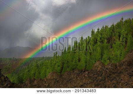 Rainbow Over The Forest, The Phenomenon Of Nature, Rocks And Trees, Bright Colors On The Rainbow, Do