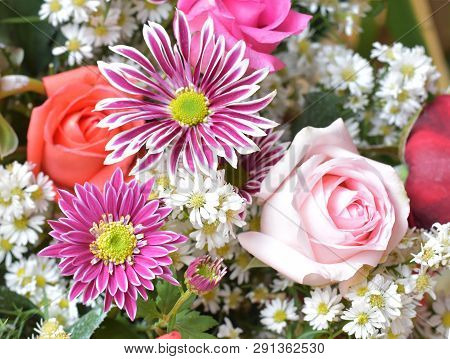 Chrysanthemum Flower And Rose Bouquet, Beautiful Floral Floor Texture, Flowery Pattern Background, R