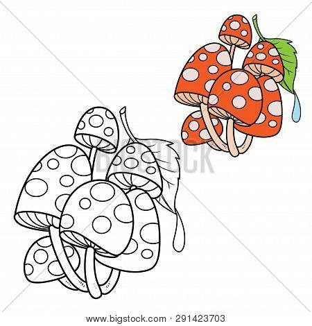 Poisonous Fly Agaric Covered With A Green Leaf With A Drop Of Dew Color And Outlined For Coloring Pa