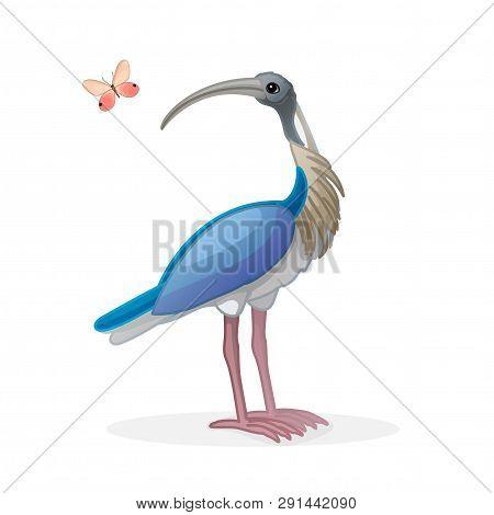 Vector Cartoon Animal Clip Art Ibis Bird