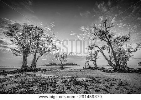 Blackwhite Panorama Photo Of  Batam Bintan Wonderful Indonesia