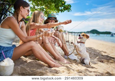 three russian tourists playing with pet dog on beach at koh samui thailand