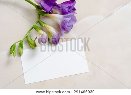 Flowers And Blank Paper Card