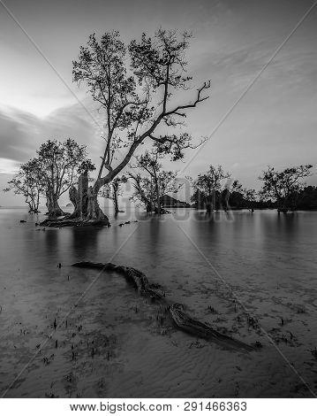 Blackwhite Landscape Photo Of Batam Bintan Wonderful Indonesia