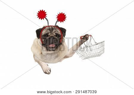 Happy Smiling Pug Puppy Dog Holding Up Wire Metal Shopping Basket, Wearing Red Diadem, Isolated On W