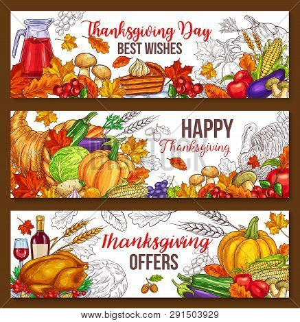Thanksgiving Day Sketch Banners Of Traditional Roasted Turkey And Fruit Pie, Pumpkin Or Corn And Mus